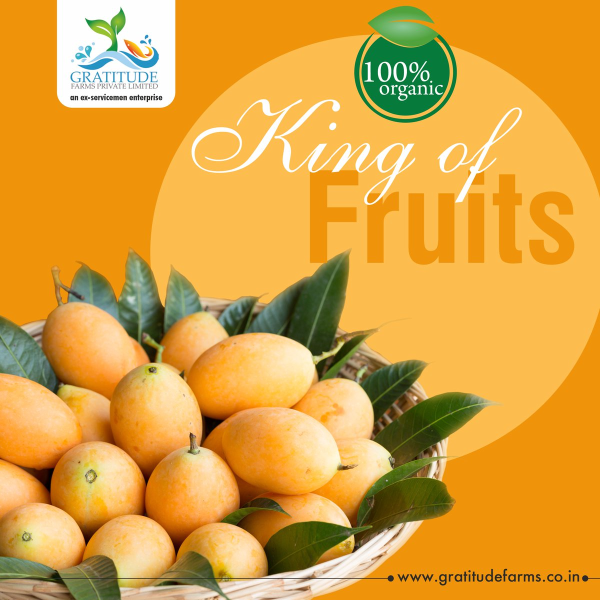 Pick from our range of fresh, organic fruits - they will satisfy those sweet tooth cravings and keep up the health quotient!  Visit @gratitudefarms -   #gratitudefarms #immunityboost #health #immunity #organic #organicfood #safety #stayhomestaysafe #fruits