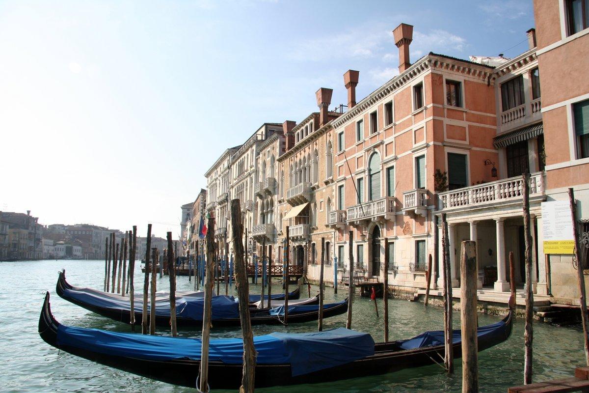 Grand Canal, Venice. #Venice #Venezia #Italy #Italia #architecture #architecturephotography #landscapephotography #landscapehunter #landscape #urban #urbanphotography #photography #photos #photooftheday #Travel #travelphotography #tourism #thursdayvibes #picofthedaypic.twitter.com/qDFTJX97Mf
