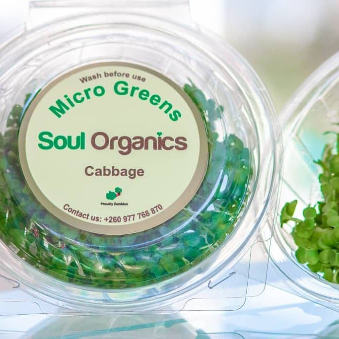 New product  partner: Soul organics! These aromatic greens, known as micro herbs or vegetable confetti, are rich in flavour and add a welcome splash of color to a variety of dishes. MICROGREENS contain 60% higher nutrient level than mature vegetables. #Productpartner #organicfood