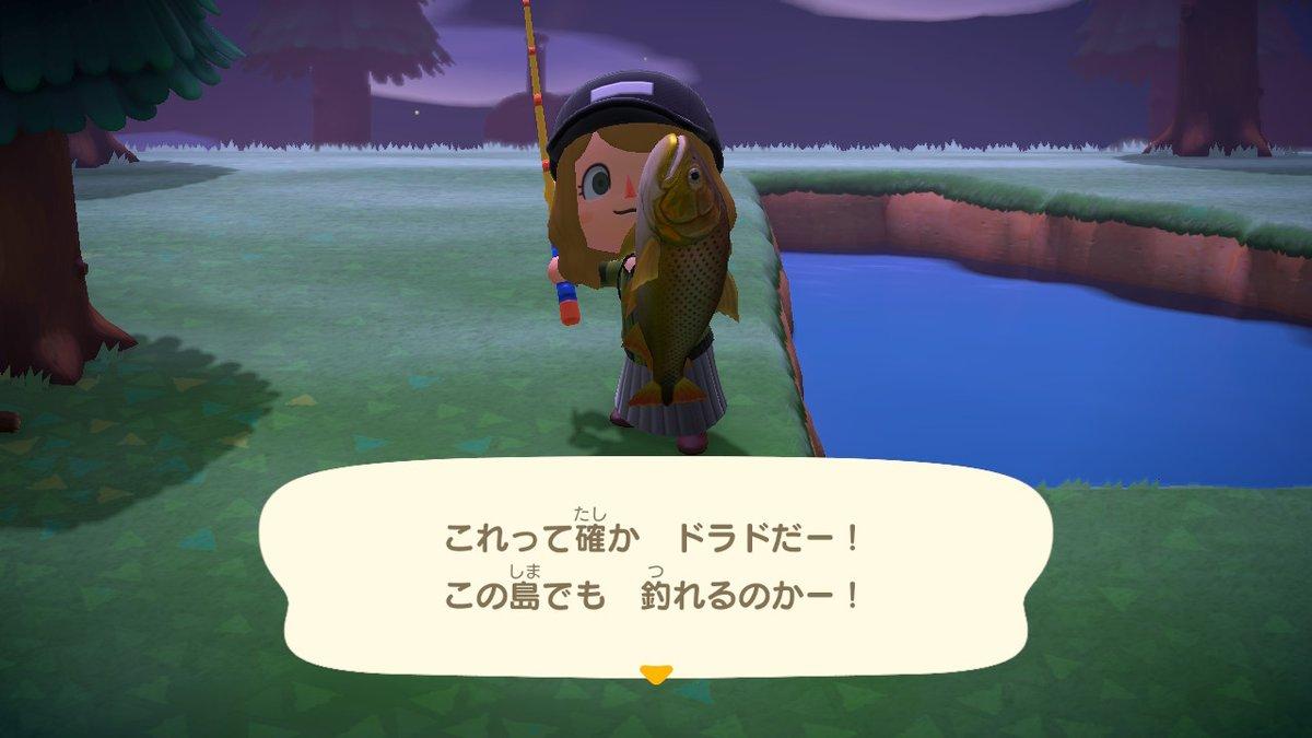 ヤッター!ドラドー! 花江さんの動画で見た  #どうぶつの森 #AnimalCrossing #ACNH #NintendoSwitch