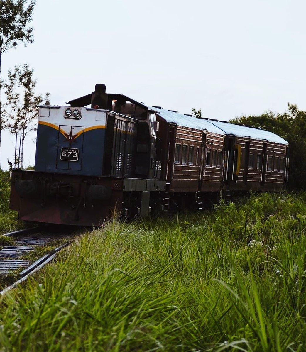 """උඩරට මැණිකේ """"Udarata Manike""""    Follow Us: @LkTravelogue IG/FB/Twitter  Dm for Credits or Removal  #travel #travel_vlog #travelogue #srilanka#girlswhotravel #explore #style #travelgram #travelingram #travelingram #ceylon #coupletravel #photography #visitsrilankapic.twitter.com/sW7x67ckaW"""