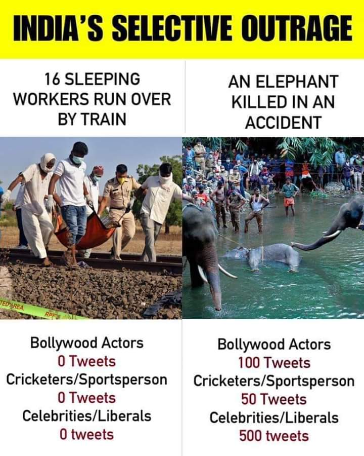 #Istandwithmalappuram No one cares about 16 lives 100%support for second pic   #society can turns into?? pic.twitter.com/4MABhsbs9p