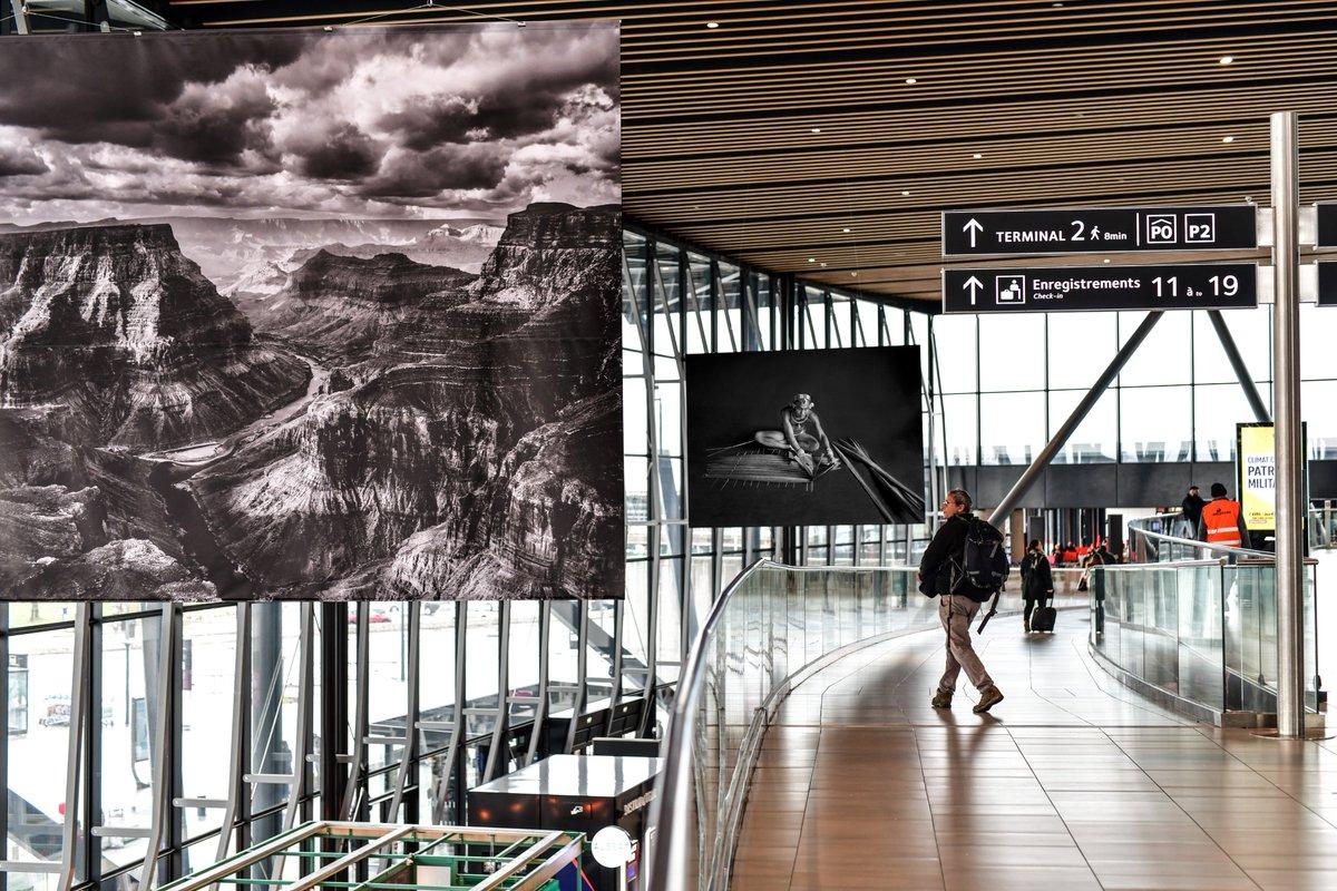 """L'exposition Genesis de Sebastião Salgado rouvre ses portes à la Sucrière, Lyon, jusqu'au 28/07. Quelques unes des œuvres """"Hommage à notre planète"""" se trouvent dans nos terminaux : https://t.co/bKuGke6Ifw #sebastiaosalgado #expogenesis #exposalgado #lasucriere #vinciairports https://t.co/Aj6VJgwhAj"""