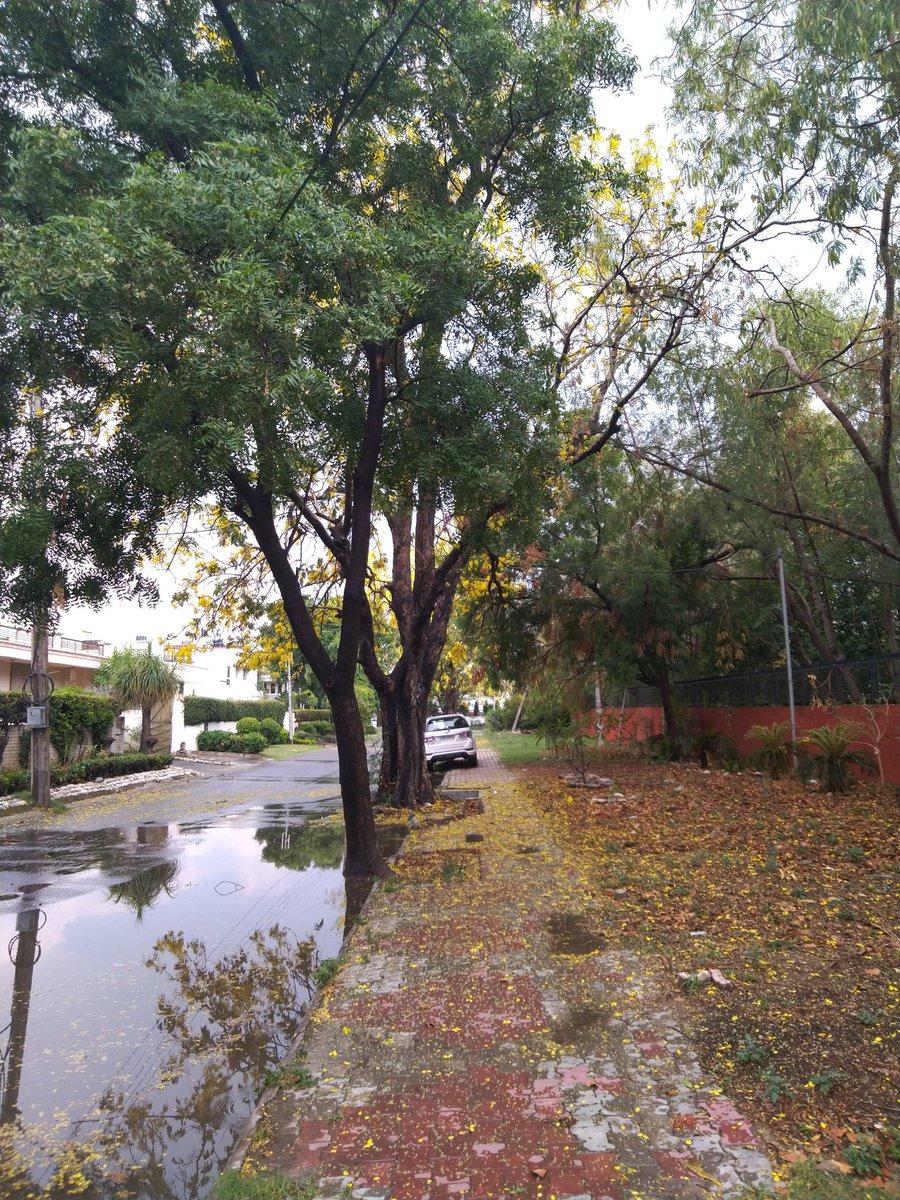 Pre Monsoon Showers in Chandigarh.. #Chandigarh #Weather