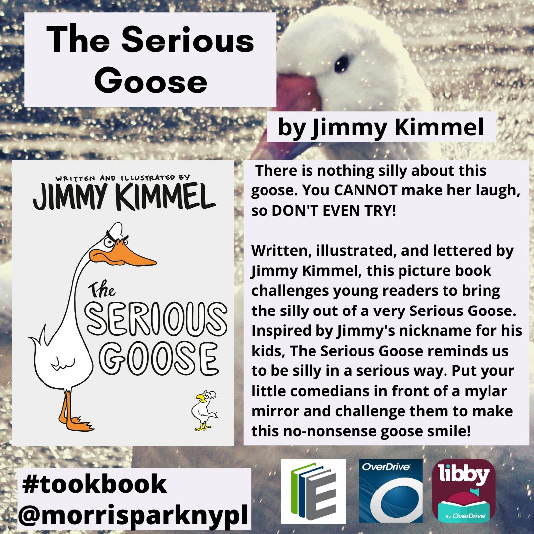 #tookbook #recommended #ChildrensBooks #fiction #PictureBooks #theseriousgoose @jimmykimmel