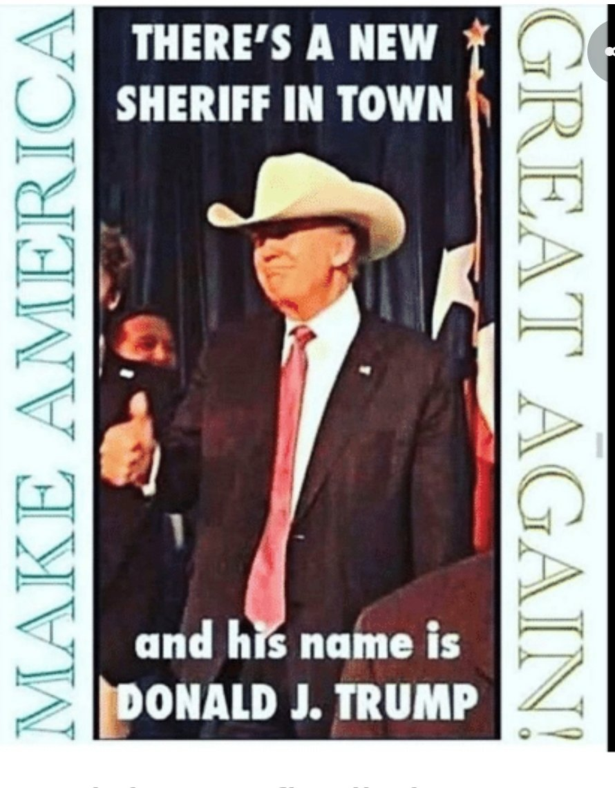 @realDonaldTrump THERE'S A NEW SHERIFF IN TOWN      His name is @realDonaldTrump ✔  ⭐RESTORING LAW AND ORDER ⭐ https://t.co/eKufyKNfRc