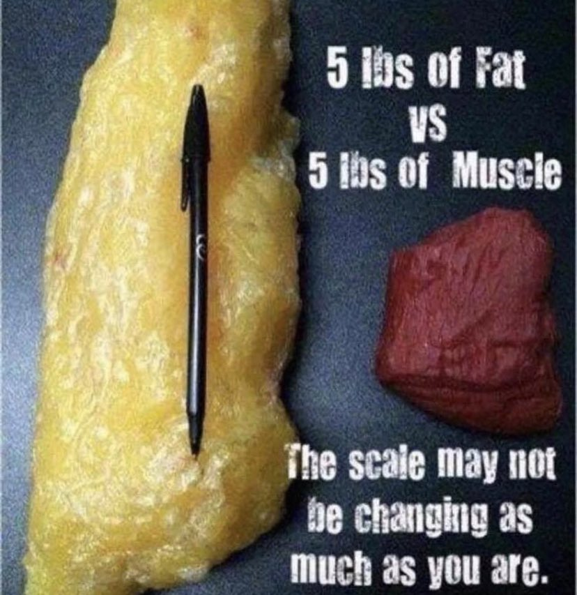 Just a little visual to remind that #muscle doesn't #weigh more than fat. It just takes up #lessspace. So, for those weeks when you may not lose weight, check your #inches bet you'll be pleasantly surprised 😊💪🙌🏻 #muscle #notfat #shrinking #youvegotthis #fitlife #zen #8weeks https://t.co/EVkxn2iGnm