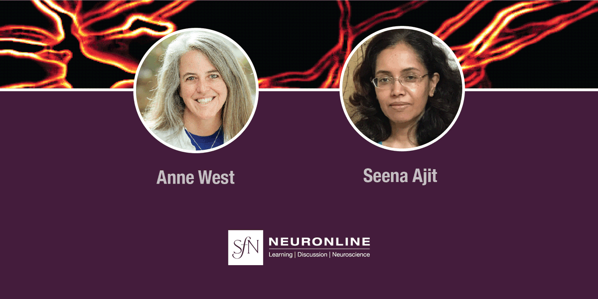Organizers Anne West, MD, PhD @ennatsew from @DukeU and Seena Ajit, PhD from @DrexelU  follow up with attendees on the #epigenetics virtual conference that took place on April 8. Join the discussion at 👉  https://t.co/SVs02q0Zar  @WestLabDuke @DrexelMedicine https://t.co/DHnxVL7i2V