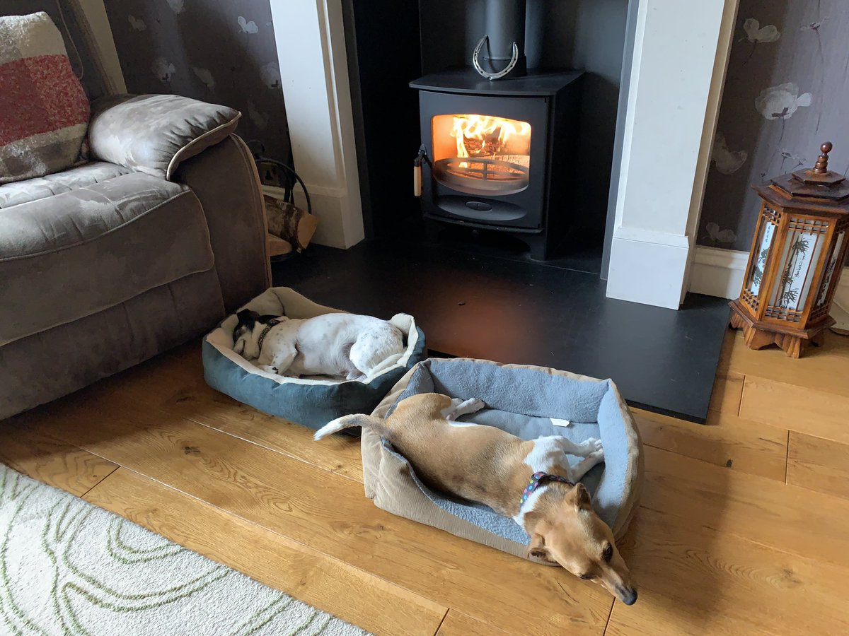 Beginning of the week it was roasting hot, fans on, windows open, lather self in sun cream weather. This afternoon it was snuggle up  next to the log burner weather. Go figure the Scottish weather! Still, the doggies were happy! #dogsofinstagram #JackRussellTerrier #logburnerpic.twitter.com/sVxKtKPID2