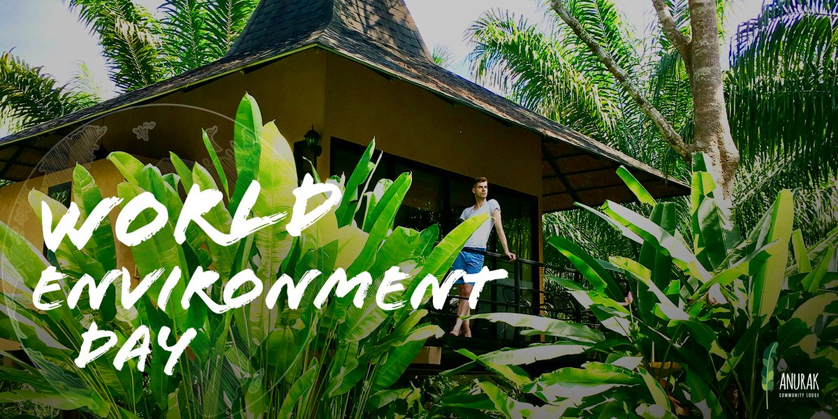 This World Environment Day, it's time for nature. #WorldEnvironmentDay https://t.co/sGUmaTvhOB