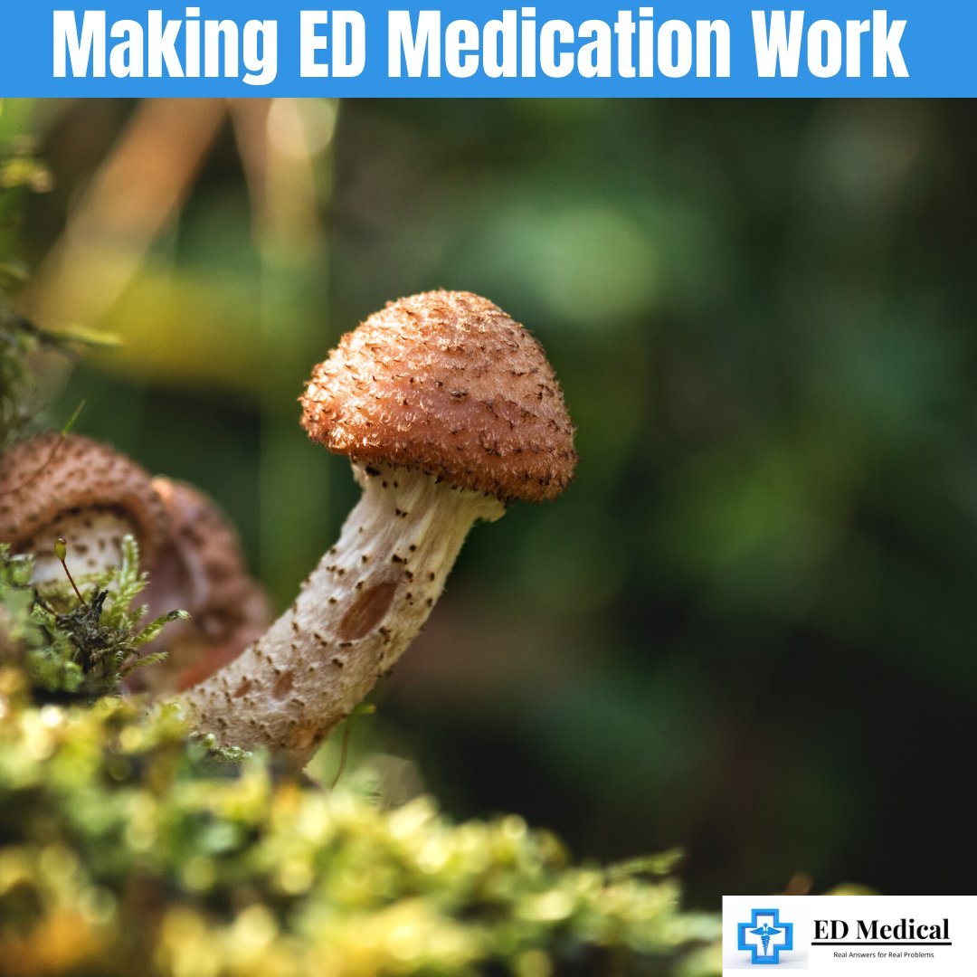 Making ED Medication Work  https://edmedical.org/making-ed-medication-work-effectively/…  #erectiledysfunction #erections #edmedication #eddrugs #edmedical #erections #menshealth #mensstyle pic.twitter.com/SGDTwYhKiX