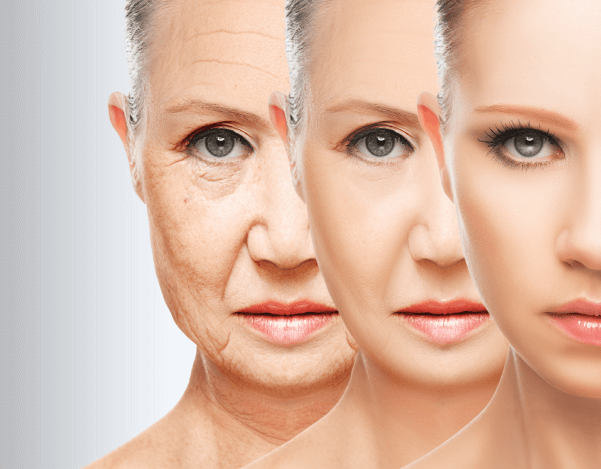 Can you really reverse your #epigenetic age? A recent report makes this claim, but we took a close look and covered the key facts from the paper on our #scienceblog: https://t.co/BO7trJo4RD #epigenetics #aging https://t.co/aGBwIafS4d