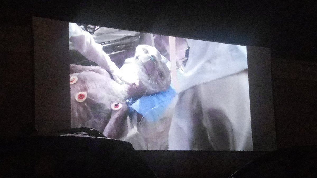 At the #DriveInMovie watching ET. pic.twitter.com/njXrPkeJHm – at Marcus Majestic Cinema of Brookfield