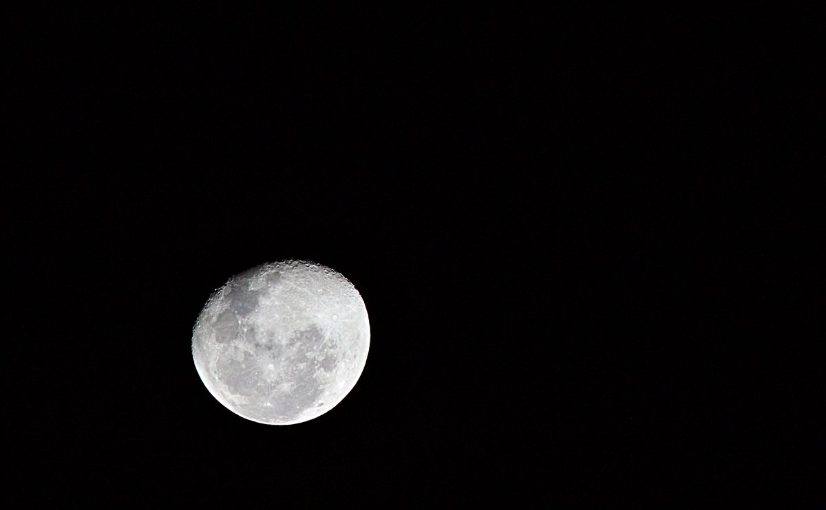 A brincadeira da noite é: fotografar a lua. #Lua #luacheia #noite #night