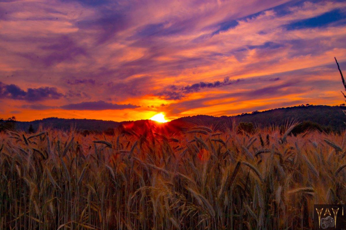 #jeudiphoto en retard! #sunset et #crépuscule sur le #comminges @HauteGaronne #pyrénéescentrales vu depuis #SaintGaudens @TourismeHG @Meteo_Pyrenees @Occitanie @laGazetteduCges @Pireneus_Radio @NNistos #sudouest @PaysComminges