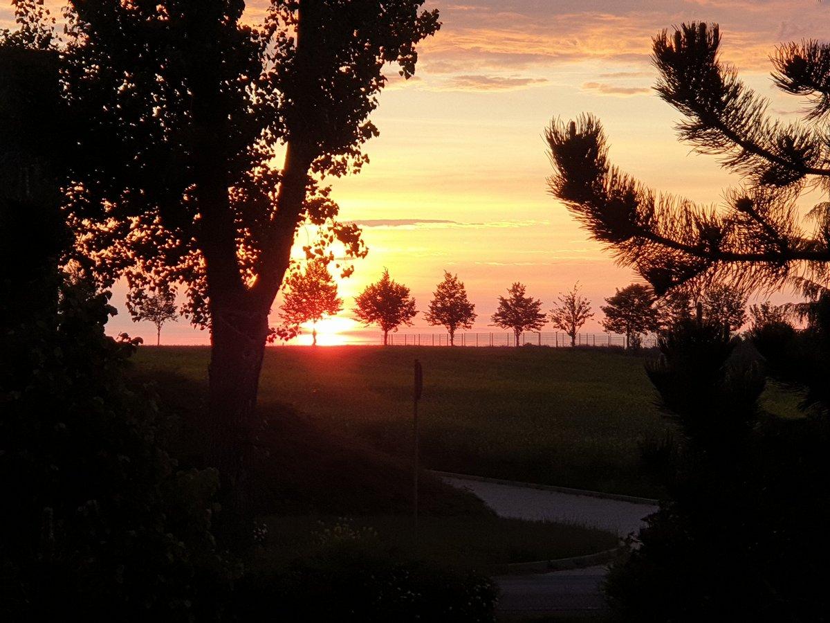 Einen wunderschönen guten Morgen wünsche ich euch 😊 Kommt gut durch den Freitag und passt auf euch auf 🤗 ☕☕☕ rüberschieb. https://t.co/0ZhC7aIeUE