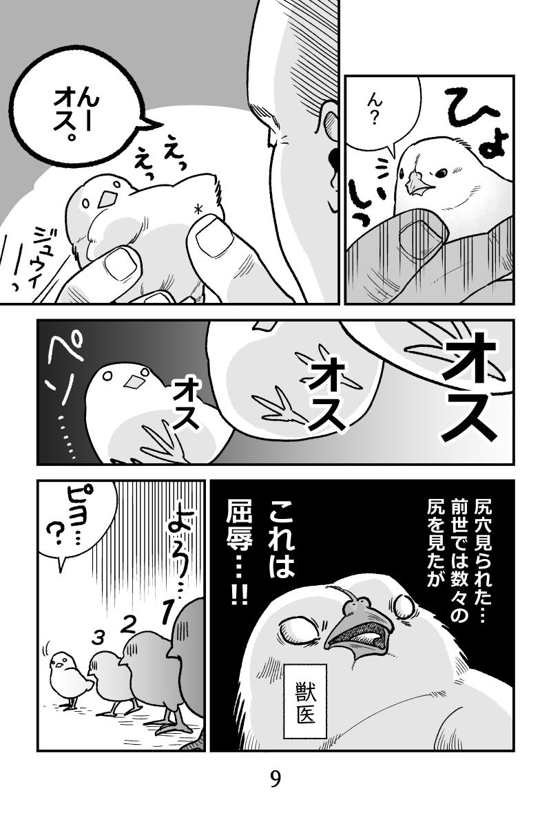 再掲「ヒヨコ共がゆめのあと」(3/3)おわり