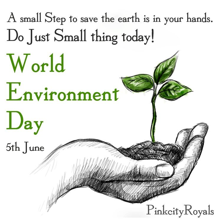 @ngpnmc Think you can do on the Environment Day🏞️@environmentday https://t.co/gjZHYQJgY3