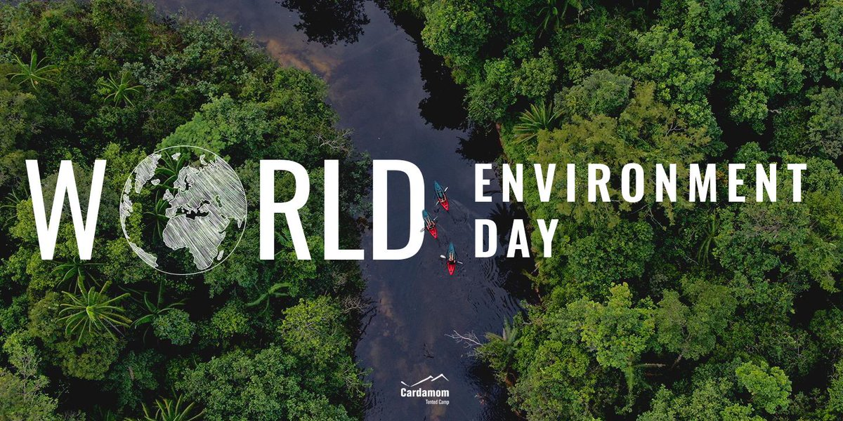 """It's World Environment Day.   This year's theme """"Time for Nature"""" invites you to take a break from the grim news in and take some time to reflect on nature. Perhaps give a little towards its conservation or at least enjoy it.   #WorldEnvironmentDay2020 https://t.co/Dn19J1ZHhu"""