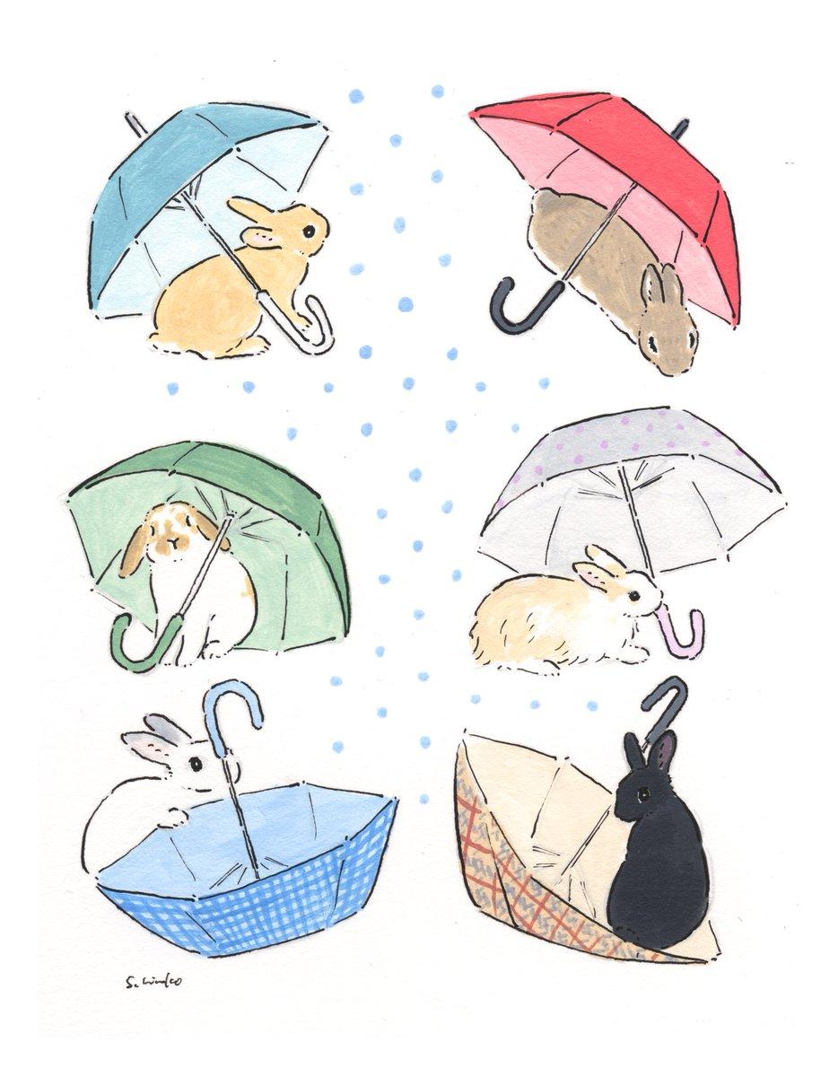 うさぎさんと傘☂️