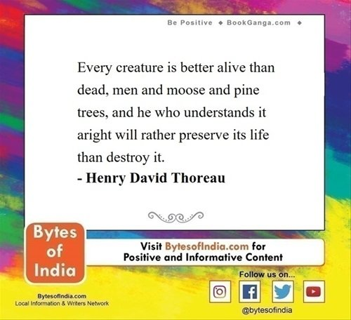 #सकारात्मक_विचार #BytesofIndia #positivethoughts #positivequotes #positivity #positivethinking #positivevibes #bepositive✌ #Henrydavidthoreu #EnvironmentDay #EnvironmentDay2020 #पर्यावरण_दिवस https://t.co/jaXIRMFkMZ