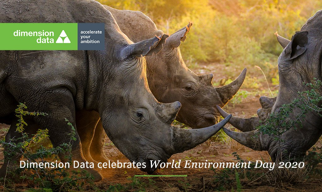 This World Environment Day, DD commits to continuing our support and protection of rhinos. Find out how we're helping ensure their survival and let us know how you plan to celebrate the day. Watch here: https://t.co/mdacMIARcI https://t.co/WqRBxmzFxI