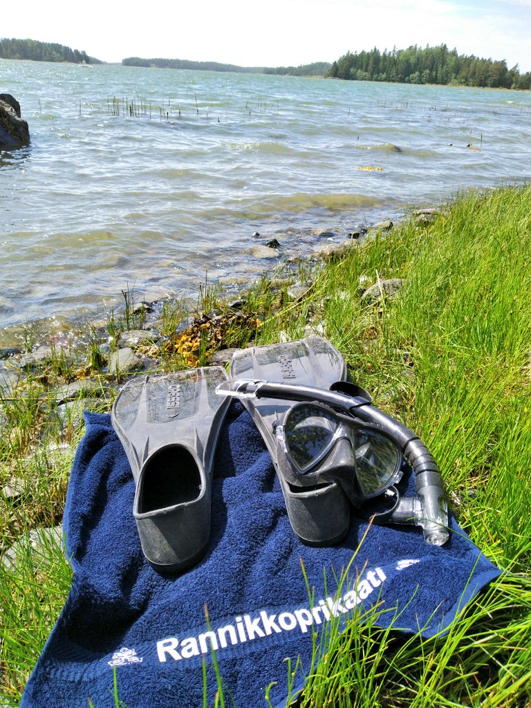 The second best moments of the day....  #archipelago #balticsea #diving #swimming  #snappertuna #raseborg #raasepori #suomi #finland pic.twitter.com/uWiAQBPub9