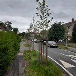 Image for the Tweet beginning: Help look after Edinburgh's trees