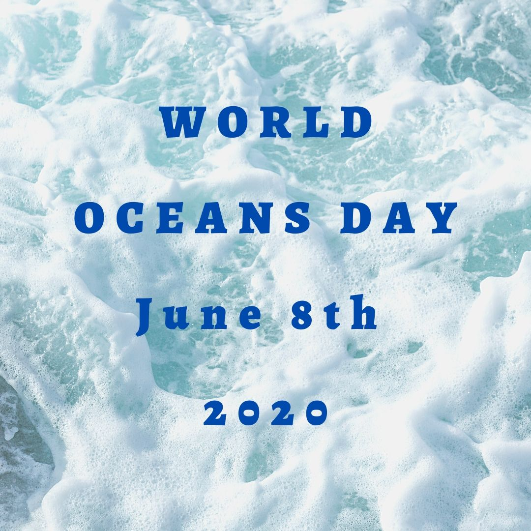 3 days until #WorldOceansDay. Join a virtual series of short presentations on topical marine issues, hosted by @CCF_Tweets in collaboration with @CCI_Cambridge & the Cambridge University #MarineConservation Society. Read more here: https://worldoceansday.org/event/cambridge-world-ocean-day-celebrations/…  @WorldOceansDaypic.twitter.com/nZ70rJ8vVT
