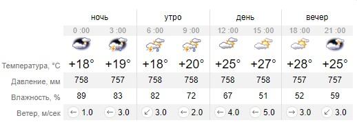 Прогноз погоди на 6 червня в Нікополі