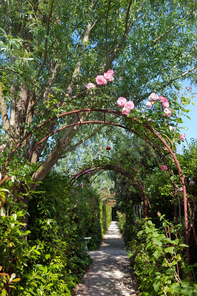 Awaken the senses with a stroll down the rose-lined path... As you wander, each turn will reveal a lush new ambiance to explore or relax in. ✨⁠ #BorgoSantoPietro #naturemeetsluxury⁠ https://t.co/hNGagfZYAT ⁠ https://t.co/BnFQn7F3Xj