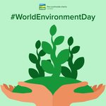 Image for the Tweet beginning: Today is #WorldEnvironmentDay, a day