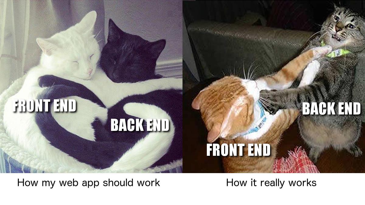 Expectation vs reality #1. #programmerhumor #codinglife #codinghumor #codingmemes #programmermemes #catmeme #dankmeme #catspic.twitter.com/s85ufXneW2