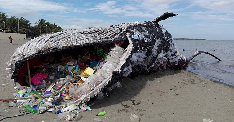 On #WorldEnvironmentDay it is worth reflecting on what kind of planet we are leaving behind. By 2050, plastic in the oceans will outweigh fish - @wef report. The oceans will contain at least 937 million tons of plastic and 895 million tons of fish - if we don't change course.