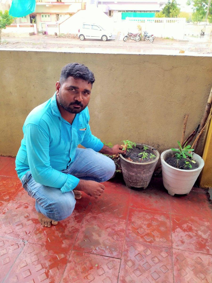 Happy World Environment Day  #cscplantatree  @CSCegov_  @CSCGujarat  @dintya15  @CSC_Guj_Rohitpic.twitter.com/yc0L6uXQkc