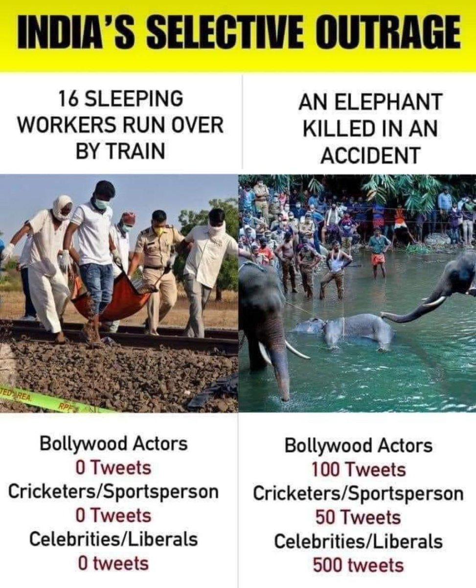 देश की सच्चाई खोखली सामवेदनशीलता ऐसा लगता है #BollywoodActors #Cricketers #Sportspersons #celebrities इन्हे कोई आत्मसम्मान नही रहा!  @INCIndia  @RahulGandhipic.twitter.com/sHfi6Ng8mk