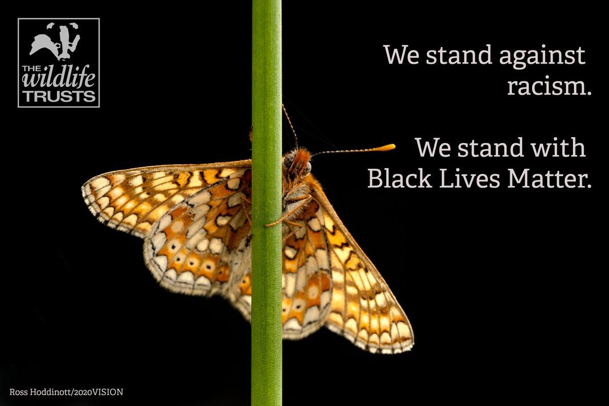 Black Lives Matter. We stand in solidarity. #BlackInNature #BlackBirdersWeek