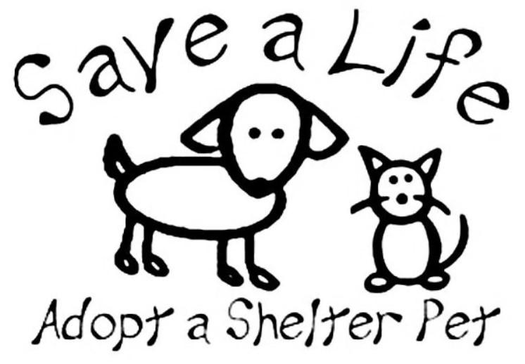Adopt don't shop: #Pets #Dogs #Cats #RescueAPet #FosterHome #AnimalLover #AnimalRescuer #AnimalWelfare #WildlifeRescue #DogShelter #AdoptDontShop #AdoptAShelterDog #CatsAndDogs #GermanShepherd #RescueDogs #RescueCats #ForeverHome #SaveAShelterDog #SaveShelterAnimalspic.twitter.com/SrjbIEN8lk