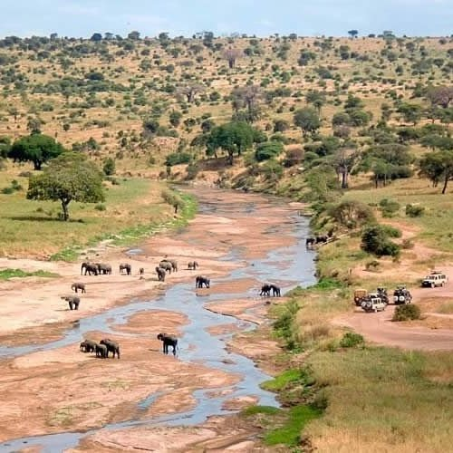 The beautiful Tarangire River in Tarangire National park Tanzania never get dry in dry season, elephants & other animals are always closer to the river- https://t.co/4fu8lHnXne #travel #wildlife #holidays #journey #wilderness #seetheworld #beautiful #nature #art #photography https://t.co/rN266klFV8