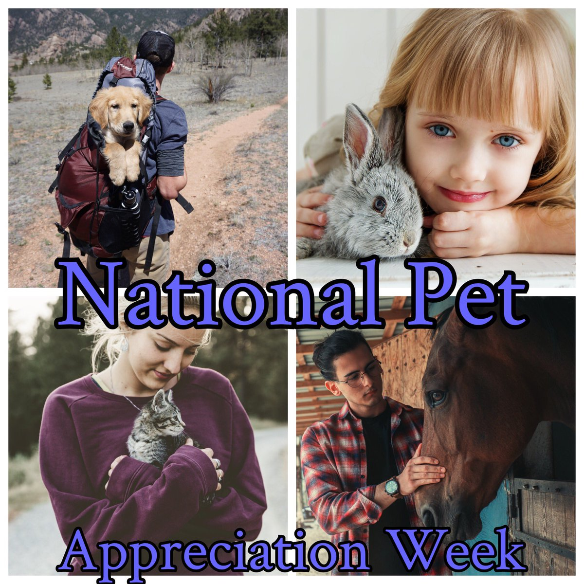 Don't forget that it's National Pet Appreciation Week! Let's show our pets how much we appreciate them. #ik9academy #dogtraining #puppytraining #sandiego #dogsofinstagram #catsofinstagram #petsofinstagram #cat #cats #dogs #dog #puppy #puppies #puppiesofinstagram #pets #dogloverspic.twitter.com/kbGfYWjU9A