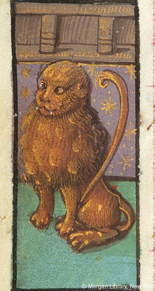 me as a medieval monk: all right boys how are we disrespecting lions today