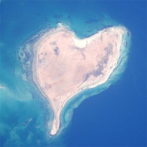 Happy #WorldEnvironmentDay Day! I'm thankful for our #planet & our environment that uniquely supports our life & all life we share this amazing place in space with. #weliveonaplanet #weareallearthlings #thinblueline #earthfromspace #backtoearth #heart #space #environment #life pic.twitter.com/3Y3NIz4KdG