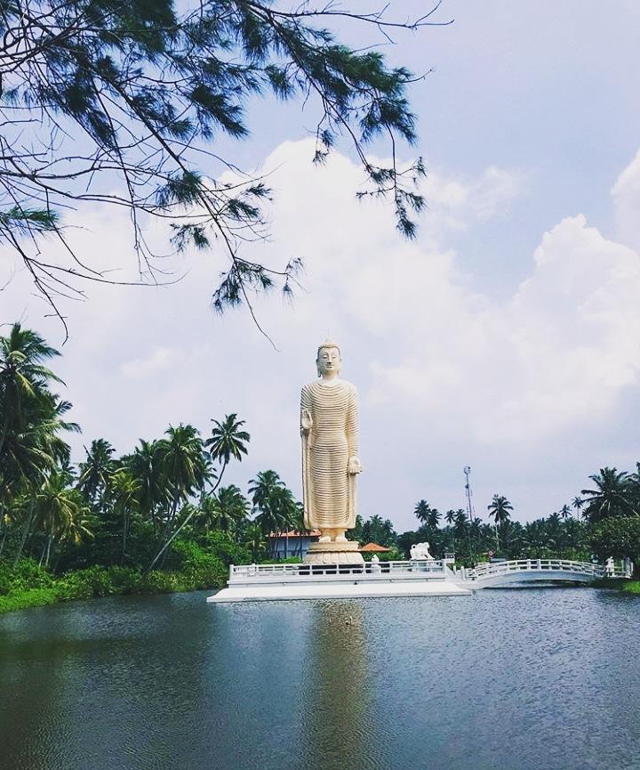 Ceylon Culture    Follow Us: @LkTravelogue IG/FB/Twitter  Photo Credits: @gaiabresciani (IG Acc)  #travel #travel_vlog #travelogue #srilanka#girlswhotravel #explore #style #Buddhism #Buddha #culture #ceylon #coupletravel #photography #visitsrilanka#templepic.twitter.com/dcqCSYBbdw