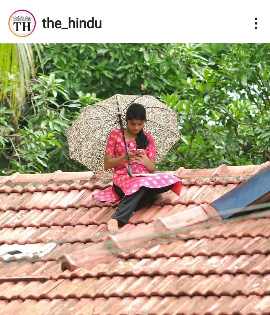 A student of Fifth Semester English, in Areekkal, Kerala, sits on the roof of her house, the only place with fairly good signal strength for mobile data, attending classes online. Photo courtesy: Sakkir Hussain, The Hindu.