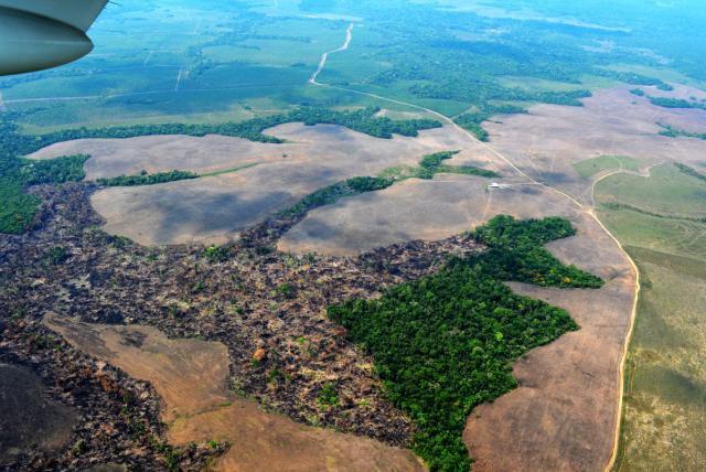 #SpamDeColombia por que no se dan cuenta de la #deforestacion del #Amazonas @Colombia no solo hoy en #DiaDelMedioAmbiente ???? @NoticiasRCN @Telemundo @ELTIEMPO #Colombia @IvanDuquepic.twitter.com/3ZwYwJUZtj