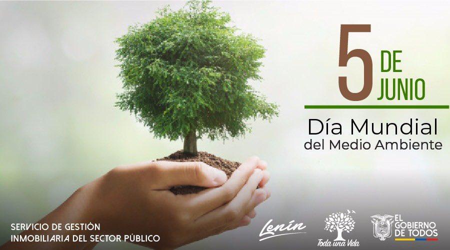 Hoy se celebra el día del #MedioAmbiente. Seamos más sensibles y conscientes sobre el cuidado y protección del ambiente. Recicla, ahorra agua, utiliza bolsas de tela, solo así brindaremos cuidado y protección a nuestro planeta. 🌳 https://t.co/7Rwr8nYVtP