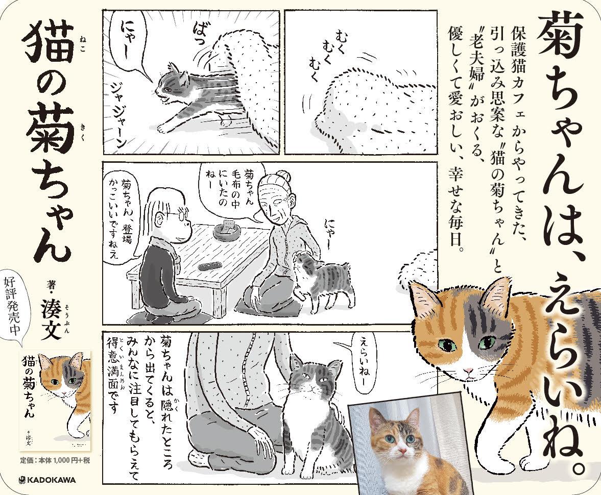 電車の広告をつくっていただきました。🐾 東武スカイツリー線(半蔵門線/田園都市線)のドアに貼っていただいてます。在宅勤務の解除で電車をお使いの方もいらっしゃると思いますが、どうぞお身体おいといください。#猫の菊ちゃん