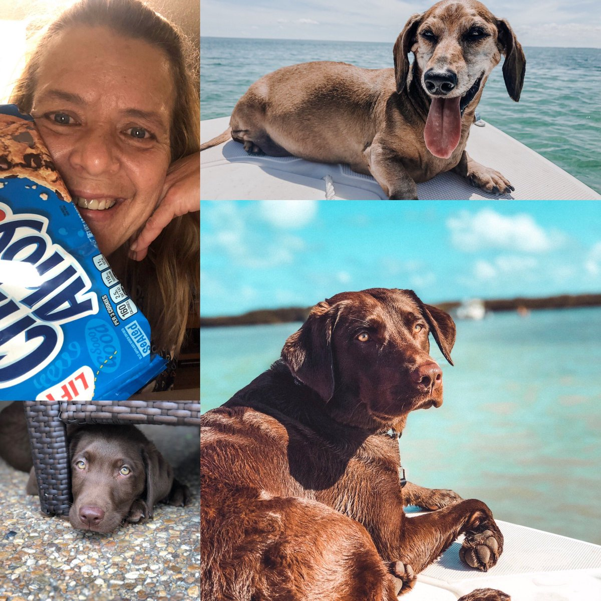 @ChipsAhoy #chipsahoy #happiertogether #sweepstakes https://t.co/CLmgnHwibn