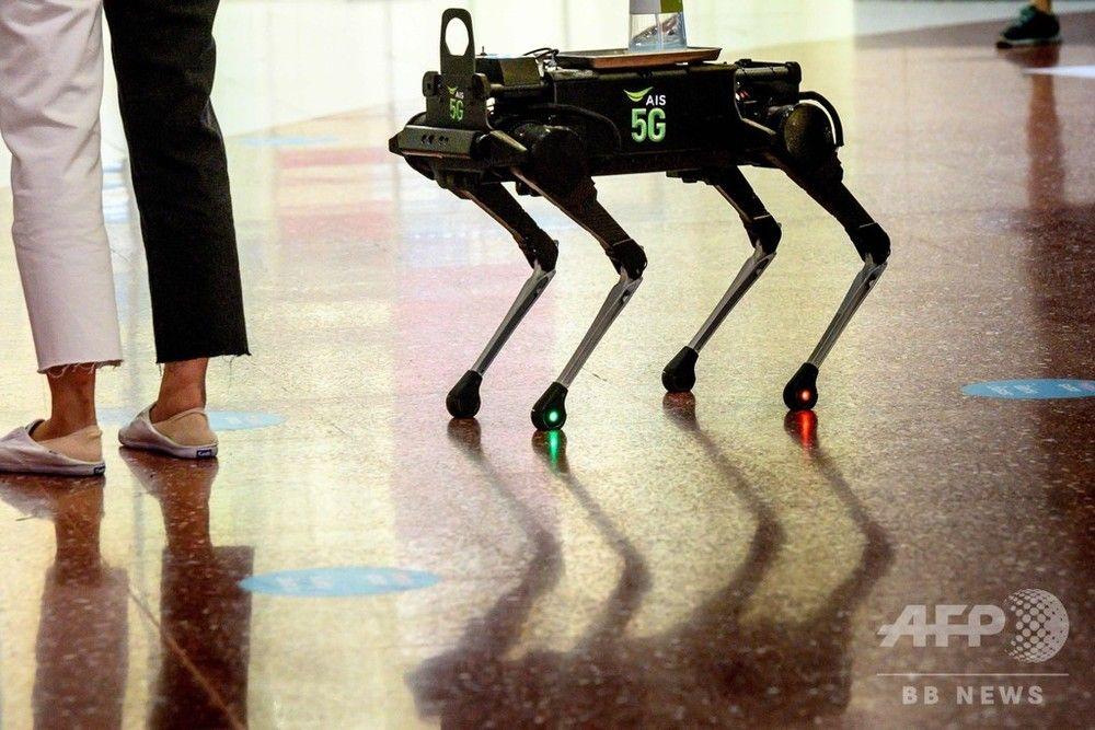 新型コロナウイルス対策の段階的緩和を進めているタイ・バンコクのショッピングモールに、人々の間を歩き回って手指の消毒を促すロボット犬が登場した。