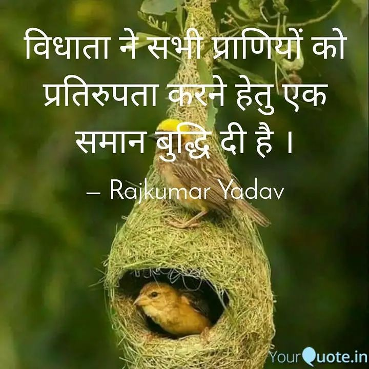 #eighthquote  #quote #quotesoftheday  #quotesforlife #education  #mindset #knowyourself  #rajkumaryadavquotes   Read my thoughts on @YourQuoteApp    #yourquote #quote #stories #qotd #quoteoftheday #wordporn #quotestagram #wordswag #wordsofwisdom #inspirationalquotes #writeawaypic.twitter.com/oI8CBNvs6q